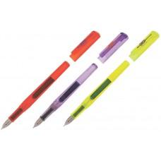 Ручка перова ZB.2241 корпус асорті